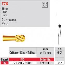 T7X.314.012 - Poire