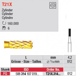 T21X.314.012 - Cylindre