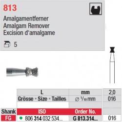 G 813.314.016-Excision d'amalgame