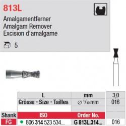 G 813L.314.016-Excision d'amalgame