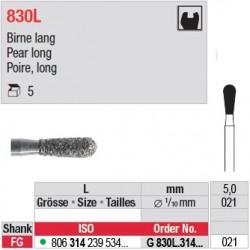 G 830L.314.021-Poire,long