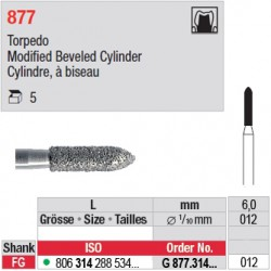 G 877.314.012 - Cylindre, à biseau