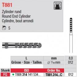 T881.314.012C - Cylindre, bout arrondi