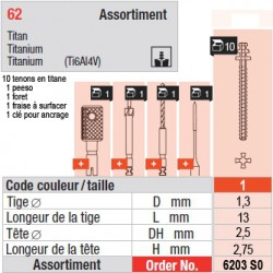 6203SO - Assortiment tenons taille 1 (courts)