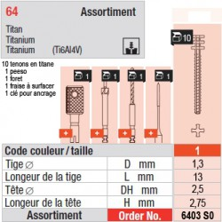 6403SO - Assortiment tenons taille 1 (longs)