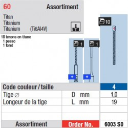 6003SO - Assortiment tenons taille 4