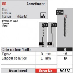 6005SO - Assortiment tenons taille 6