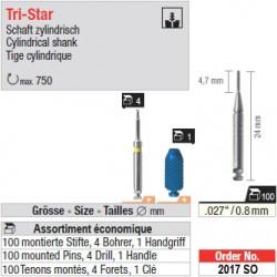 2017SO - Assortiment économique de tenons TriStar 0,8 mm