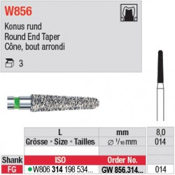 GW856.314.014 - White Tiger - Cône, bord arrondi