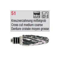 denture 51