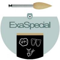 Exa Special