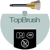TopBrush (SiC-Brushlets)