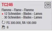 TC246 - Flamme