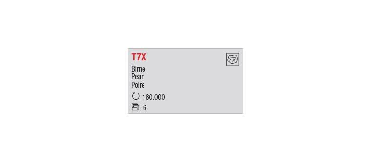 T7X - Poire