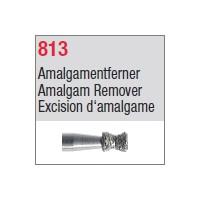 813 - Excision d'amalgame