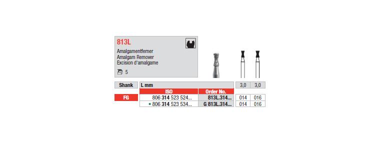 813L - Excision d'amalgame