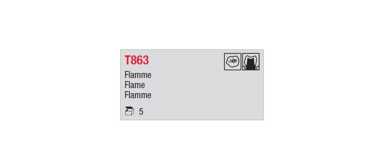 T863 - flamme