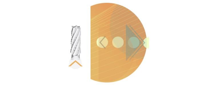 C31 - denture croisée standard