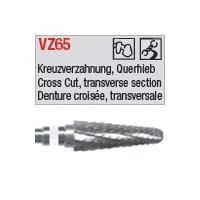 denture 65